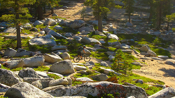 Tahoe mountain bike - cycle tours downhill MTB